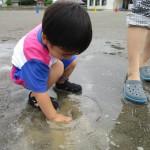 水たまり1